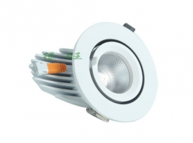 LED Adjustable ceiling spotlight THSD-5-6W